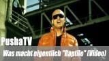 """PushaTV: Was macht eigentlich """"Raptile"""" (Video)"""